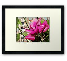 Pink flowers in residential area Framed Print