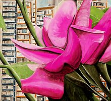 Pink flowers in residential area by Christopher Strong