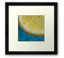G and T With a Slice of Lemon Framed Print
