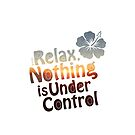 Relax, Nothing is Under Control by 73553