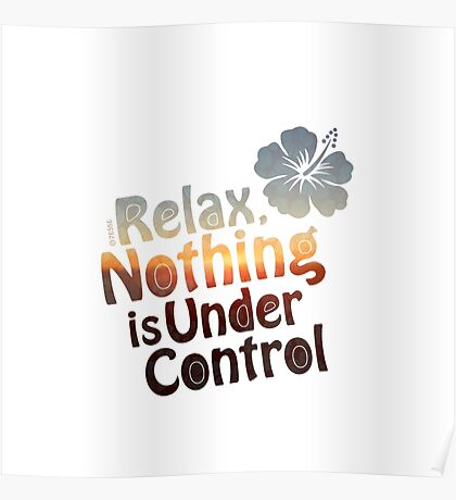Relax, Nothing is Under Control Poster