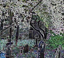 Multi coloured graveyard by ciararachel