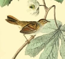 James Audubon Vector Rebuild - The Birds of America - From Drawings Made in the United States and Their Territories V 1-7 1840 - Swamp Sparrow Sticker