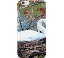 Mother Swan iPhone Case/Skin