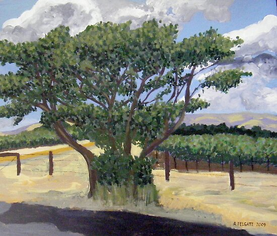 Main Road into Willunga, SA by Alexandra Felgate