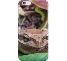 Eastern Common Froglet iPhone Case/Skin