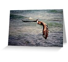 Pelican gets tricked.. Greeting Card