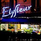 ElyFleur by martinilogic