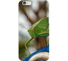 Garden Katydid iPhone Case/Skin