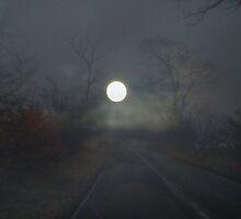 MoonLight Lane.... by DoreenPhillips