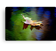 Floating Fall Leaf... Canvas Print