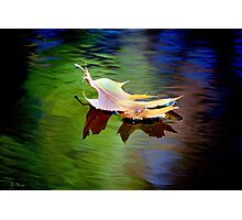Floating Fall Leaf... Photographic Print