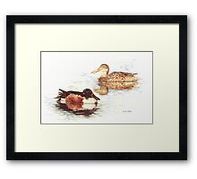 Mallards in Still Water Framed Print