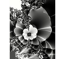 I will send you wild flowers... Photographic Print