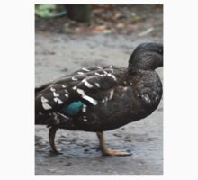 African Black Duck RWD Kids Clothes