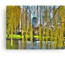 Curtains of Boston Canvas Print