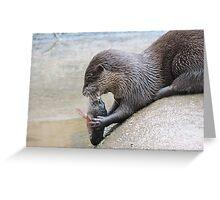 Nom Nom Nom, Tasty Fishy Greeting Card