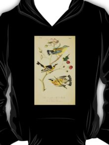 James Audubon Vector Rebuild - The Birds of America - From Drawings Made in the United States and Their Territories V 1-7 1840 - Black and Yellow Wood Warbler T-Shirt