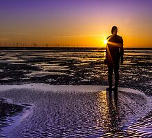 Sunbeams, shadows and silhouettes  by Paul Madden
