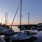 Dusk in the harbour by neon-gobi
