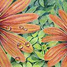 Orange daisy by Ann Nightingale