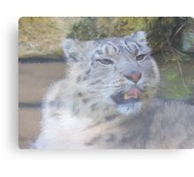 Snow Leopard Portrait (Photo Cezanne Style) Canvas Print