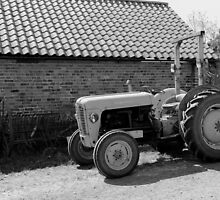 Massey Ferguson Tractor by Lightrace