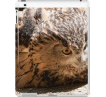 owl in the mountains iPad Case/Skin