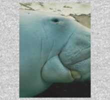 Dugong at the Sydney Aquarium (3505690937) T-Shirt