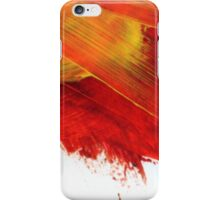 Fire Signs iPhone Case/Skin
