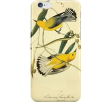 James Audubon Vector Rebuild - The Birds of America - From Drawings Made in the United States and Their Territories V 1-7 1840 - Prothonotary Swamp Warbler iPhone Case/Skin