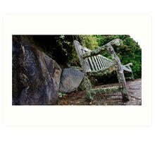 Mossy bench Art Print