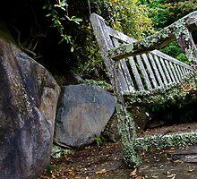 Mossy bench by Alexander Meysztowicz-Howen