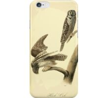 James Audubon Vector Rebuild - The Birds of America - From Drawings Made in the United States and Their Territories V 1-7 1840 - Hawk Owl iPhone Case/Skin