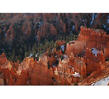 Rich Russet Red Photographic Print