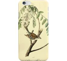 James Audubon Vector Rebuild - The Birds of America - From Drawings Made in the United States and Their Territories V 1-7 1840 - Chipping Bunting iPhone Case/Skin