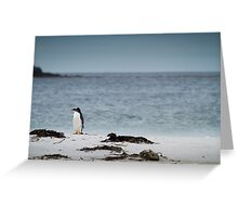 Lonely Penguin Greeting Card