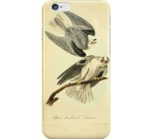 James Audubon Vector Rebuild - The Birds of America - From Drawings Made in the United States and Their Territories V 1-7 1840 - Black Shouldered Elanus iPhone Case/Skin