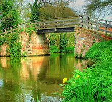 Dod`s Bridge, The Wey Navigation by Colin J Williams Photography
