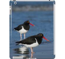 Magellanic Oystercatchers iPad Case/Skin