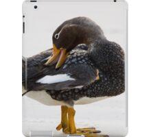 Falkland Flightless Steamer Duck iPad Case/Skin