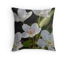 blossum on a pear tree  Throw Pillow