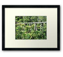 Scenic Trestle Framed Print