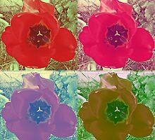 Pop-art tulip's 1 by acreativevision