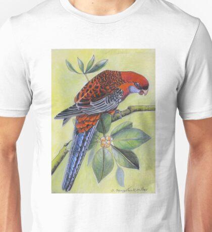 Crimson Rosella   Art piece T-Shirt
