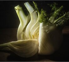 Fennel by Darren Wilkin