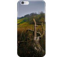 Marshland iPhone Case/Skin