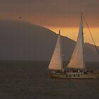 sailing - navegando by Bernhard Matejka