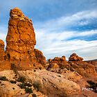 Owl Rock - Arches National park - Moab - Utah by louishay