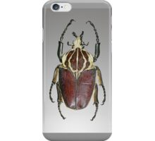 List of largest insects iPhone Case/Skin